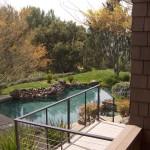 landscape backyard pool and plants