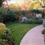 garden back yard after